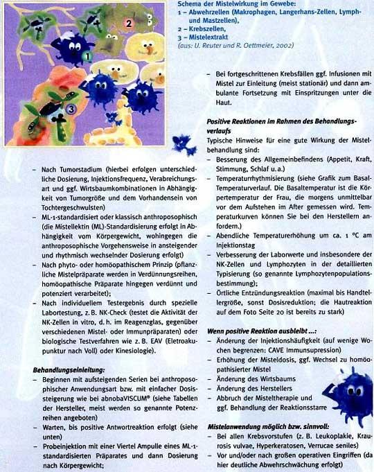 Artikel: Misteltherapie im Rahmen der Biologischen Krebsbehandlung - Das Immunsystem stärken, Seite 3
