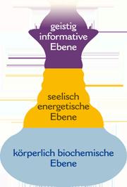 Diagnose beim Biocheck und Therapie nach dem Konzept der drei Ebenen: körperlich biochemische Ebene, seelisch energetische Ebene und geistig informative Ebene