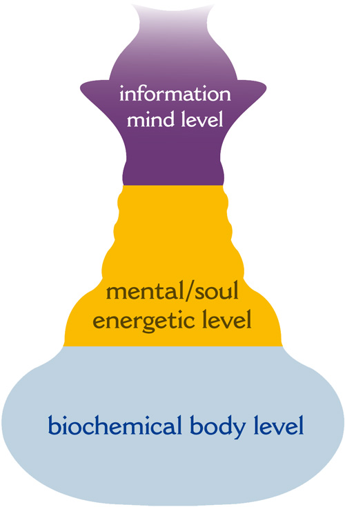 The three levels of the therapy concept of the hospital Klinik im LEBEN: biochemical body level, mental/soul energetic level and information mind level